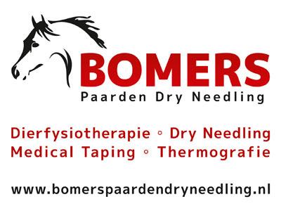 www.bomerspaardendryneedling.nl
