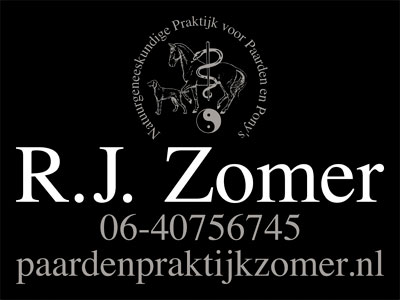 www.paardenpraktijkzomer.nl