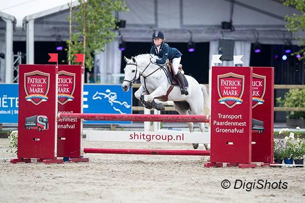Friso woudstra architecten trofee pony s in vragender
